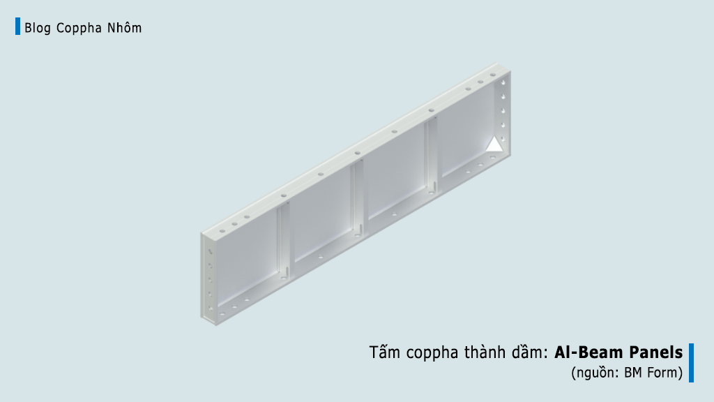 tam-coppha-nhom-thanh-dam